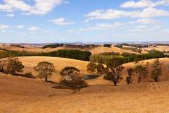 Campo de Austrália imagens de stock