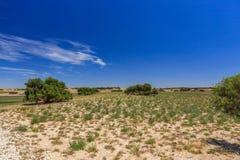 Paisagem australiana sul com montes e prados com arbustos e estrada de terra contra o céu azul com véu das nuvens Fotos de Stock Royalty Free