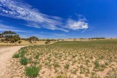 Paisagem australiana sul com montes e prados com arbustos e estrada de terra contra o céu azul com véu das nuvens Foto de Stock Royalty Free