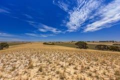 Paisagem australiana sul com montes e prados com arbustos e estrada de terra contra o céu azul com véu das nuvens Imagem de Stock