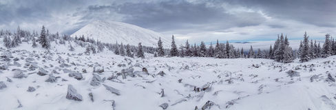 Paisagem bloqueado pela neve do inverno com pico de montanha Imagem de Stock