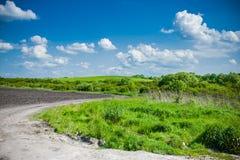 Paisagem bonita com o céu e o campo de trigo verde Imagem de Stock