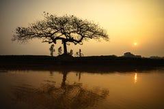 Paisagem bonita com silhueta das árvores e reflexão no por do sol com a mulher vietnamiana que veste a posição tradicional do Ao  Fotos de Stock Royalty Free