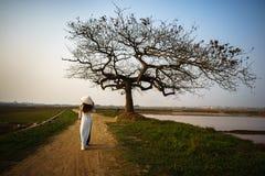 Paisagem bonita com a silhueta das árvores no por do sol com a mulher vietnamiana que veste o vestido tradicional Ao Dai que anda Fotos de Stock Royalty Free