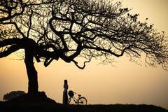 Paisagem bonita com a silhueta das árvores no por do sol com a mulher vietnamiana que veste o vestido tradicional Ao Dai que está Imagem de Stock