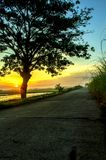 Paisagem bonita da árvore e do por do sol foto de stock