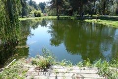 Paisagem bonita da lagoa de pesca no Columbia Britânica fotos de stock royalty free