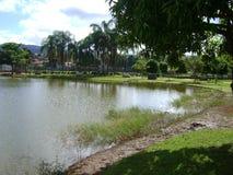 Paisagem bonita da lagoa, ?rvores nos lados e sombras das nuvens fotografia de stock