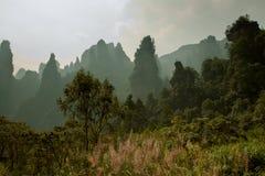 Paisagem bonita da montanha Fotos de Stock