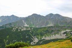 Paisagem bonita da montanha com grama verde no fundo do céu azul Fotografia de Stock