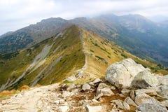 Paisagem bonita da montanha com grama verde no fundo do céu azul Fotos de Stock