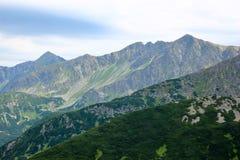 Paisagem bonita da montanha com grama verde no fundo do céu azul Fotos de Stock Royalty Free