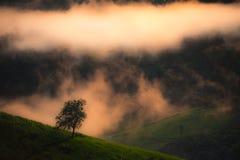 Paisagem bonita da montanha com névoa Foto de Stock Royalty Free