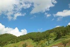 Paisagem bonita da montanha, com os picos de montanha cobertos com a floresta e o céu nebuloso, montanhas Imagens de Stock