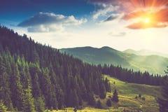 Paisagem bonita da montanha do verão na luz do sol Fotografia de Stock