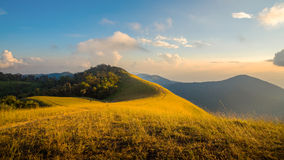 Paisagem bonita da montanha dourada dos campos de grama imagens de stock royalty free
