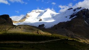 Paisagem bonita da montanha em Athabasca Galcier/Colômbia Icefield em Alberta/Columbia Britânica - Canadá imagens de stock royalty free