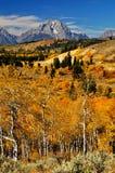 Paisagem bonita da queda com a montanha tampada neve Imagem de Stock