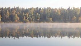 Paisagem bonita de Autumn Fall sobre o lago nevoento video estoque