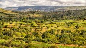 Paisagem bonita de Harar fotos de stock
