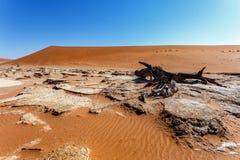 Paisagem bonita de Sossusvlei do Vale da Morte Fotografia de Stock Royalty Free