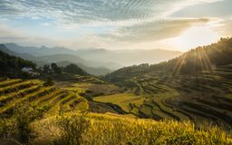 Paisagem bonita de terraços do arroz em China imagens de stock royalty free