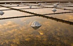 Paisagem bonita de um verão com uma exploração agrícola de sal Foto de Stock Royalty Free
