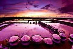 Paisagem bonita de um verão com uma exploração agrícola de sal Imagem de Stock Royalty Free