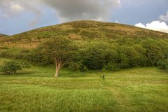 Paisagem bonita, Devon, Inglaterra Fotografia de Stock Royalty Free