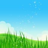 Paisagem bonita do campo do verão. ilustração royalty free