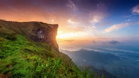 Paisagem bonita do fá do qui de Phu no nascer do sol Parque nacional do fá do qui de Phu em Chiang Rai Province, Tailândia imagem de stock