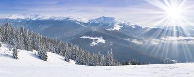 Paisagem bonita do inverno Fotografia de Stock Royalty Free
