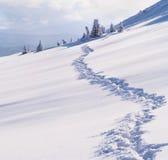 Paisagem bonita do inverno Imagem de Stock Royalty Free