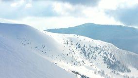Paisagem bonita do inverno com árvores cobertos de neve Montanhas do inverno video estoque