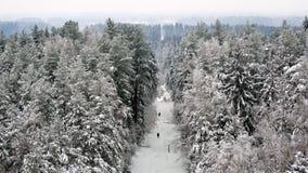 Paisagem bonita do inverno de uma torre de vigia Imagens de Stock