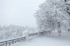 Paisagem bonita do inverno durante a tempestade da neve Imagens de Stock