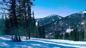 Paisagem bonita do inverno em slowmotion na estância de esqui 1920x1080 filme