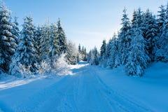 Paisagem bonita do inverno em um dia ensolarado fotos de stock royalty free