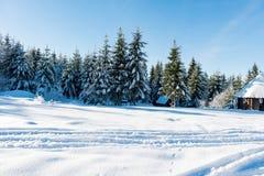 Paisagem bonita do inverno em um dia ensolarado fotografia de stock