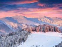 Paisagem bonita do inverno nas montanhas Foto de Stock