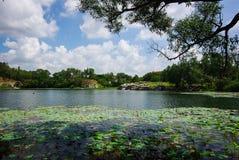 Paisagem bonita do lago Fotografia de Stock Royalty Free