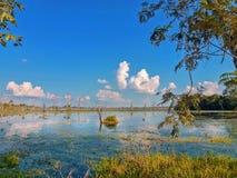 Paisagem bonita do lago da seiva de Tonle, Camboja imagem de stock