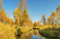 Paisagem bonita do outono imagem de stock royalty free