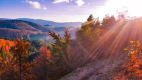 A paisagem bonita do outono Cores de outubro A beleza de cores do outono das ?rvores foto de stock royalty free