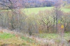 Paisagem bonita do outono, montes com árvores e campo Fotografia de Stock