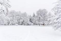 Paisagem bonita do parque do inverno de Sófia, Bulgária fotografia de stock