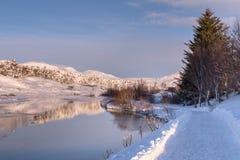 A paisagem bonita do parque nacional de Thingvellir, Islândia foto de stock