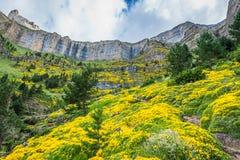 Paisagem bonita do parque nacional famoso de Ordesa, Pyrenees, Sp Foto de Stock
