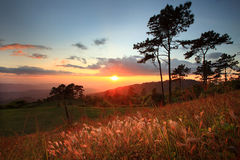 Paisagem bonita do por do sol com montanha e a nuvem agradável Fotos de Stock
