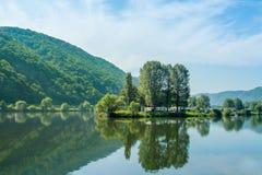 Paisagem bonita do rio moselle germany Imagens de Stock Royalty Free